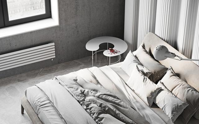 现代派的极简主义装修 独特的家具酷酷的清新小家